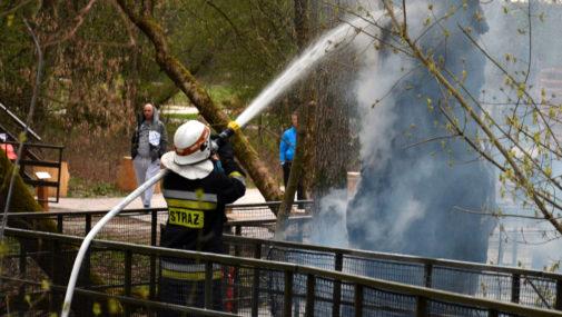 Pożar w leśnym parku w Pomiechówku