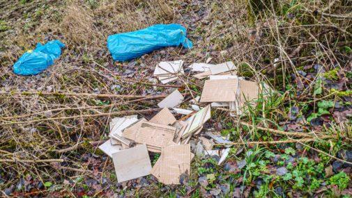 """Nasielsk: Śmieci po remoncie wyrzucone do lasu. """"Tylko motłoch tak się zachowuje"""""""