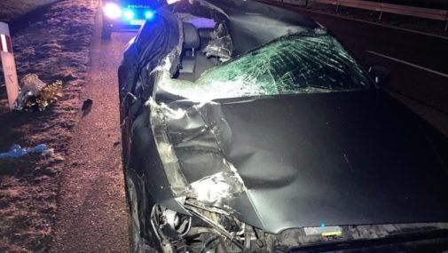 Czosnów: Policjanci poszukują świadków wypadku na DK7